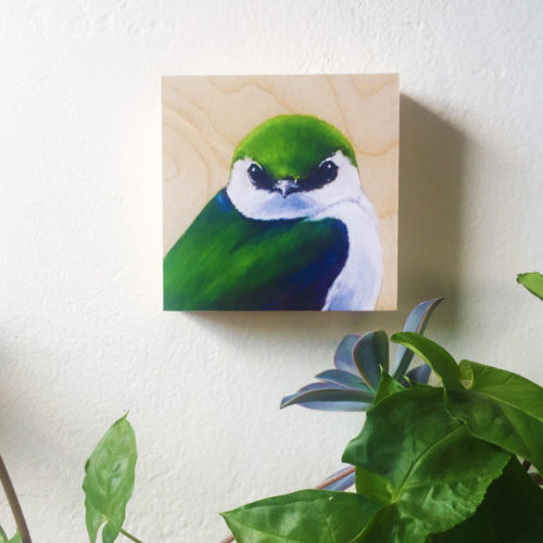 Violet Green Swallow bird art on Wall