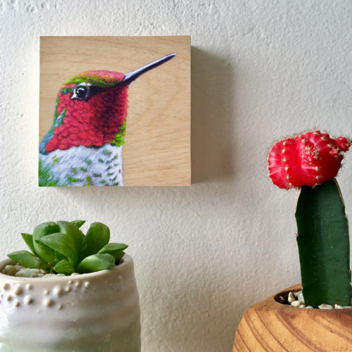 anna's hummingbird art by maggie hurley on wall