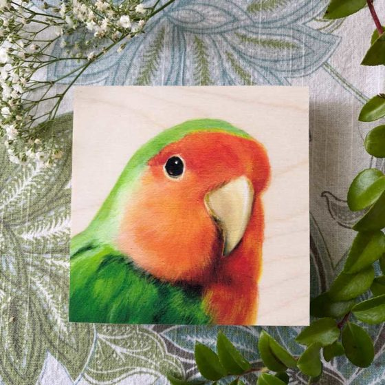 Painting of a peach-faced lovebird by Maggie Hurley