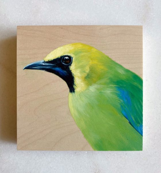 oil painting of a blue-winged leafbird