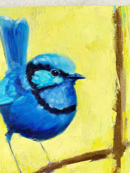 Bird art oil painting Splendid Fairy Wren close