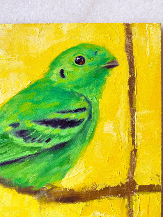 bird art painting green broadbill close up