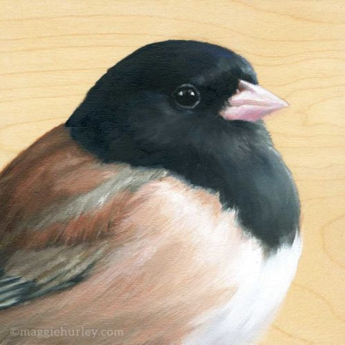 painting of a dark eyed junco on wood by Maggie Hurley