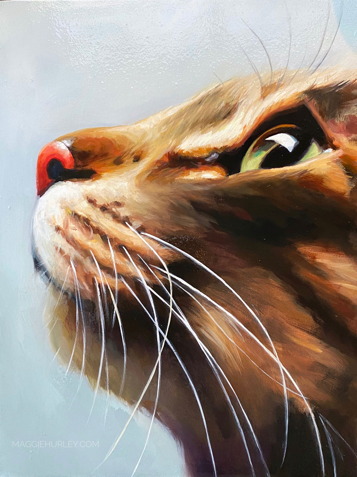 cat pet portrait by maggie hurley