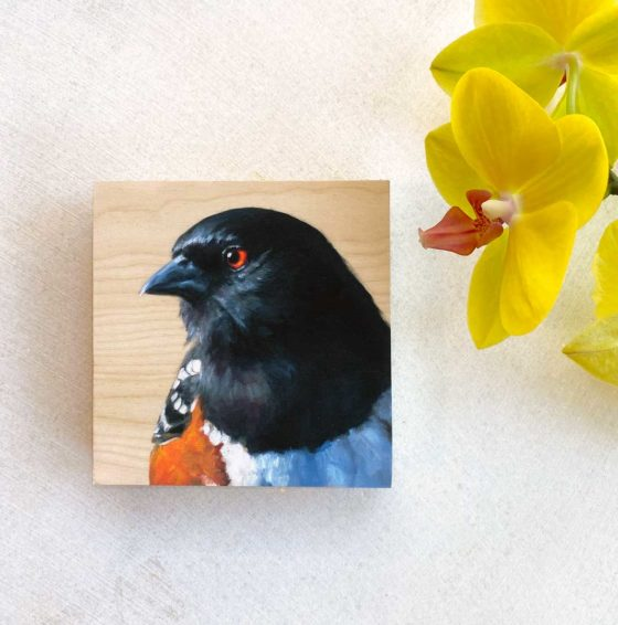 Spotted Towhee bird painting by Maggie Hurley