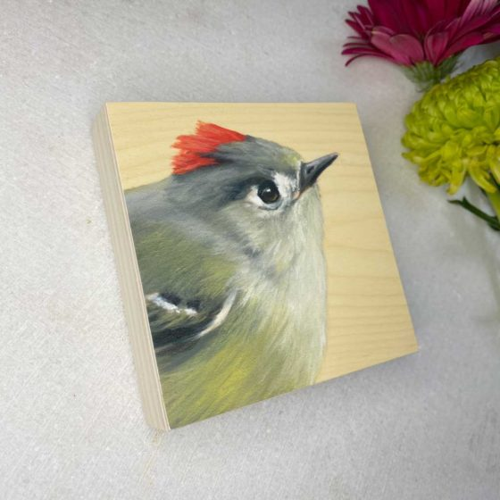 Ruby crowned kinglet bird art by maggie hurley